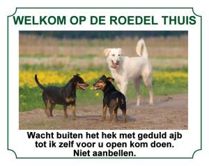 12131_Steenwijk (Waakborden met eigen foto & tekst vanaf 15 EUR)